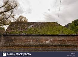 old barn house roof coated in a thick layer of moss retaining