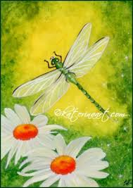 psp dragonfly butterfly psp dragonflies and