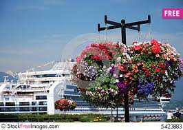 ship flowers cruise ship and flowers free stock images photos 5423883