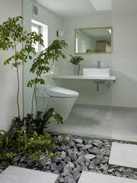 Indoor Plant Design by Gorgeous Indoor Plants For Bathroom Decorating