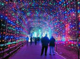 holiday lights tour detroit holiday party bus rentals for the perfect holiday gift a special