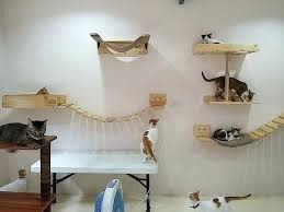 cat wall furniture cat wall furniture wall cat tree cat shelves wall wall mounted cat
