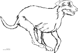 new coloring page irish wolfhound dog coloring pages coloring dog