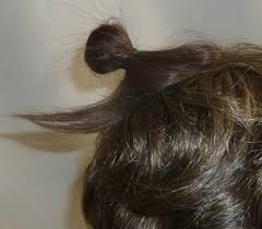 bun clip mini bun clip in human hair cmcwigs
