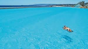 palmier du chili piscine d u0027algarrobo chili voici la plus grande piscine du monde