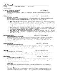Senior Programmer Resume Ad Sales Resume Resume Cv Cover Letter