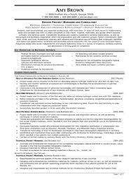 Resume Bio Example Project Management Resume Template Zuffli
