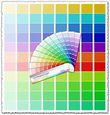 palette pantone pantone palette vector