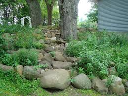 What Is A Rock Garden Shaded Hillside Rock Garden Improved Ecosystems