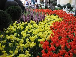 Botanical Gardens Bellagio by Sublime Garden Bellagio Conservatory U0026 Botanical Gardens