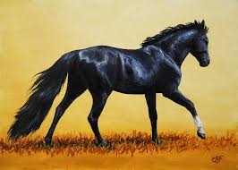 Black Mustang Horse Pictures Black Horse Paintings Fine Art America