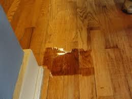 refinishing your own hardwood floors inspiration or craziness