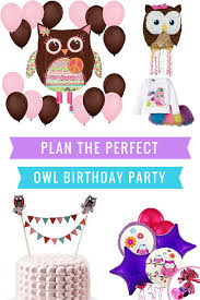 Owl Decorations by Plan The Perfect Owl Birthday Party