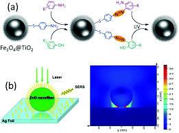 resolucion organica 5544 de 2003 notinet semiconductor enhanced raman scattering active nanomaterials and