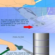 how to eliminate and prevent green algae in a swimming pool