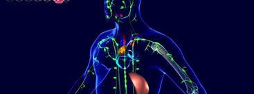 chambre sterile lymphome décès au chu de nantes le lymphome et ses traitements