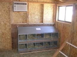 new chicken hutches animal matters