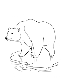 brown bears coloring pages young bear pictures animal free