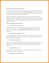 Best Resume Objective Statement by A Good Resume Objective Free Resume Example And Writing Download