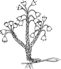 drawing of a forest flower free image