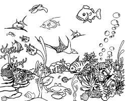 coloring page coloring page ocean animals free printable pages