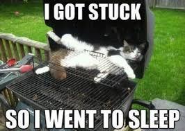 Bbq Meme - i got stuck in bbq cat meme cat planet cat planet