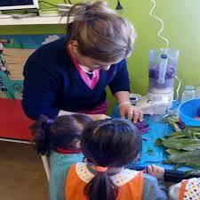 el municipio trabaja en los centros educativos en la obtención y