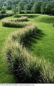 127 best soft grasses images on ornamental grass