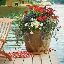 70 best container gardening images on pinterest gardening pots