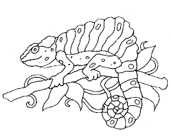 free coloring page of the rainforest rainforest animal coloring pages printable for sweet print draw free
