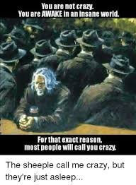 Sheeple Meme - you are not crazy you are awake in an insane world forthat exact