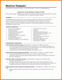 luxury quality assurance plan template templates instance
