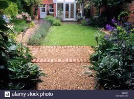 small back garden lawn border hedge brick and gravel path rosa