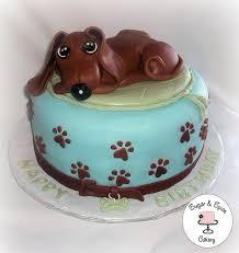 44 dachshund cakes images dachshund cake dog