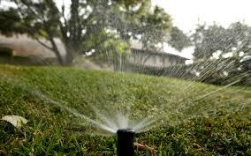 how much should you water your lawn texas a u0026m website takes out