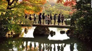 tokyo u0027s fall colors guide cnn travel