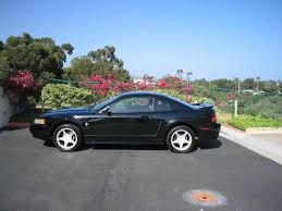 1999 Black Mustang Mustangany 1999 Ford Mustang Specs Photos Modification Info At