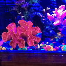 imitation artificial coral reef ornaments 15 12 5cm for fish