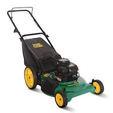 weed eater 21