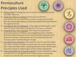 online design of certificate student portfolio exles permaculture design certificate online