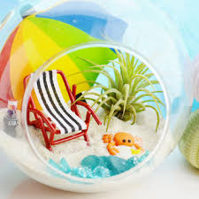 best glass globe terrarium products on wanelo