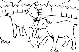 free coloring pages goats three billy goats gruff coloring pages kids coloring page goats goat