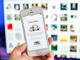 Phone Number For Itunes Help Desk An Itunes Bug Not Apple Music May Be To Blame For Disappearing