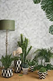 17 best images about grow houseplants 2 on pinterest