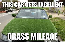 Grass Memes - grass car this car gets excellent grass mileage weknowmemes