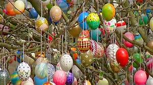 easter egg trees easter eggs hanging from trees happy easter 2017