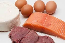 alimentazione ricca di proteine gli alimenti pi禮 ricchi di proteine cucinarefacile
