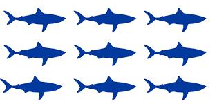 Ocean Wall Decals For Nursery by 35 Shark Stickers Ocean Theme Party Children Nursery Wallpaper