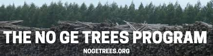 nogetrees org global justice ecology project