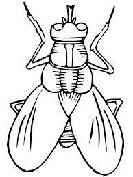 coloring pages insects bugs printable bugs bug insect coloring pages kids cartoon insect